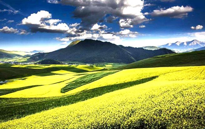 打造政治生态上的绿水青山