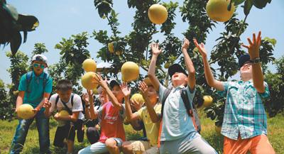 海南儋州创出九大农业品牌