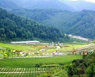 青海省乡村旅游推进行动启动