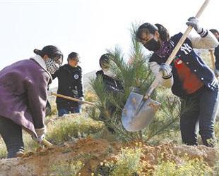 青海2018年秋季国土绿化全面启动