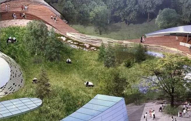 4只大熊猫春节后在西宁安家
