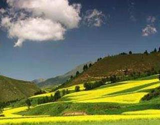 青海省3个基地入选国家级森林康养试点