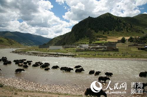 青海启动国家公园省建设书写生态文明大文章